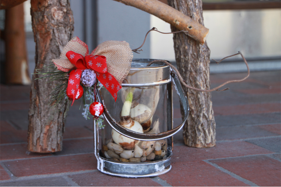 Lantern Holiday Decor